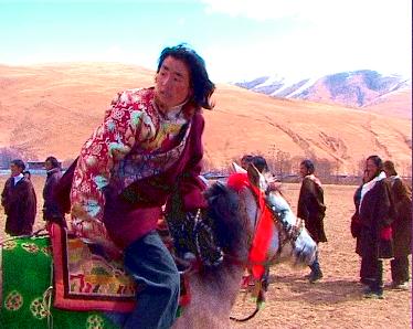 wangdu_horse1 film